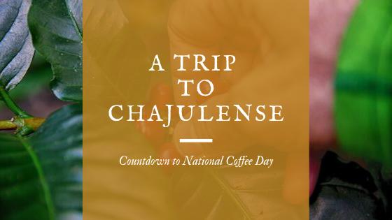 A Trip To Chajulense