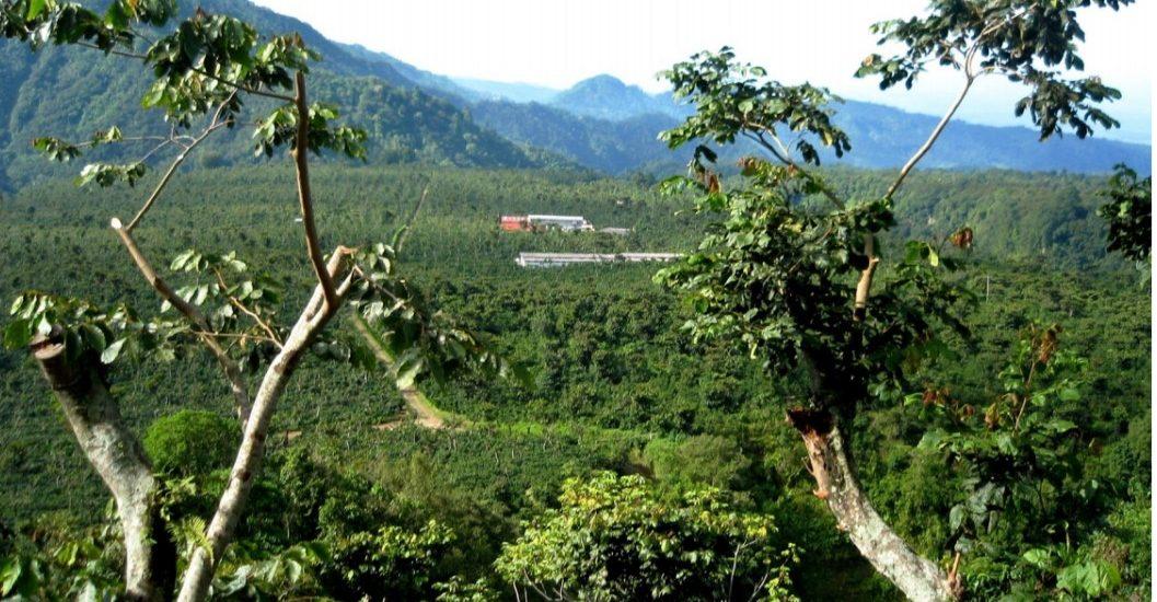 Mexico Chiapas Finca Muxbal
